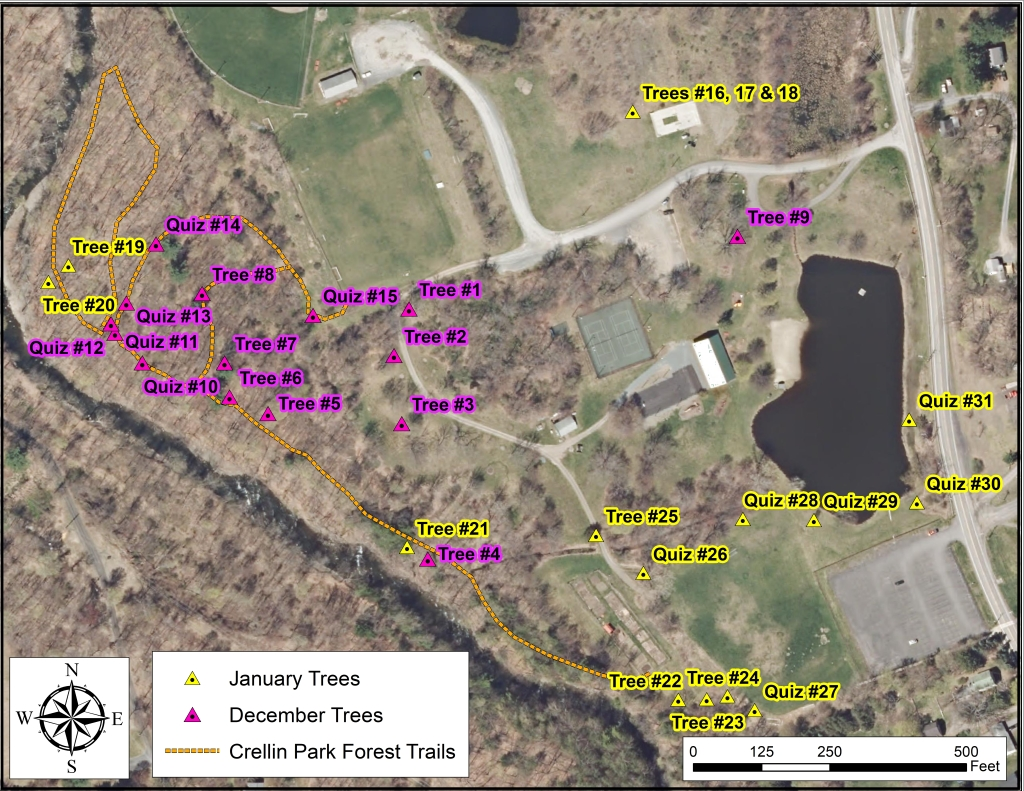 map of course trees at Crellin Park Chatham